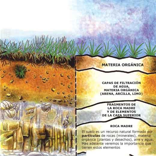 Conservaci n de suelos for Clausula suelo que ed